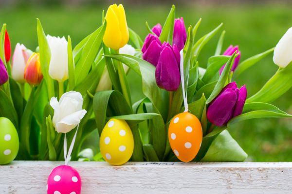 Pasqua, 25 aprile e 1° maggio